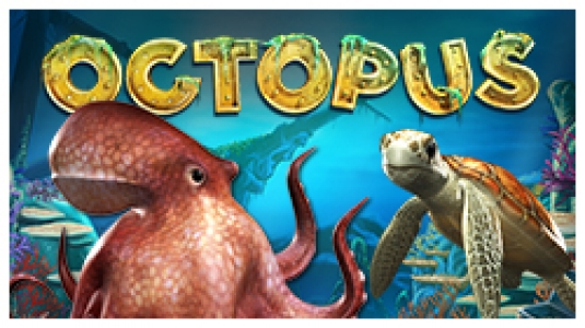 Zum Octopus
